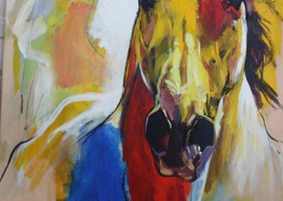 Cavallo 12