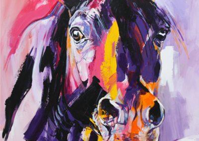 ○ Cavallo 15