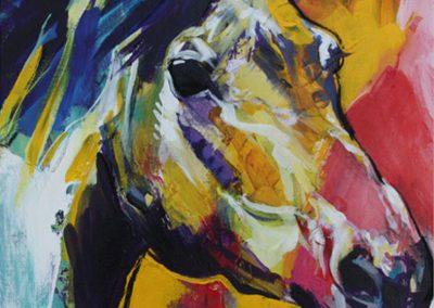 ○ Cavallo 8