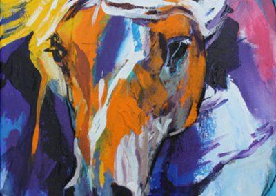 ○ Cavallo 9