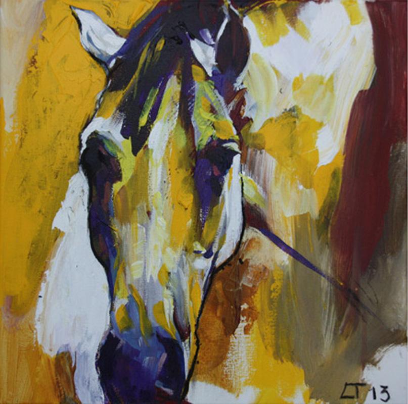 ○ Cavallo 11