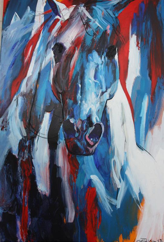 ○ Cavallo 13