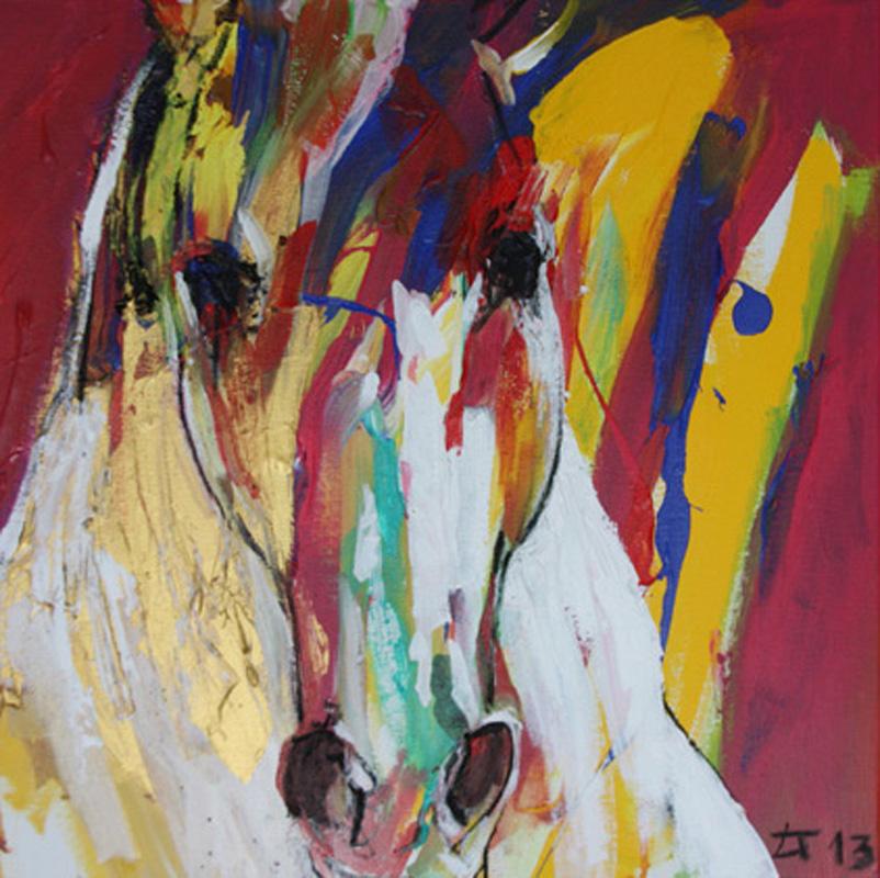 ○ Cavallo 5