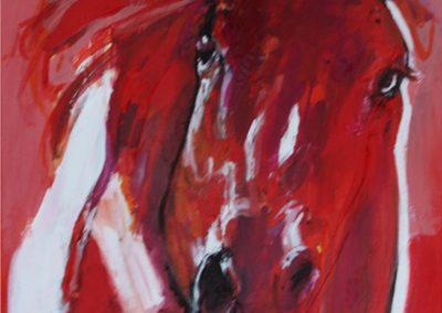 Cavallo 7