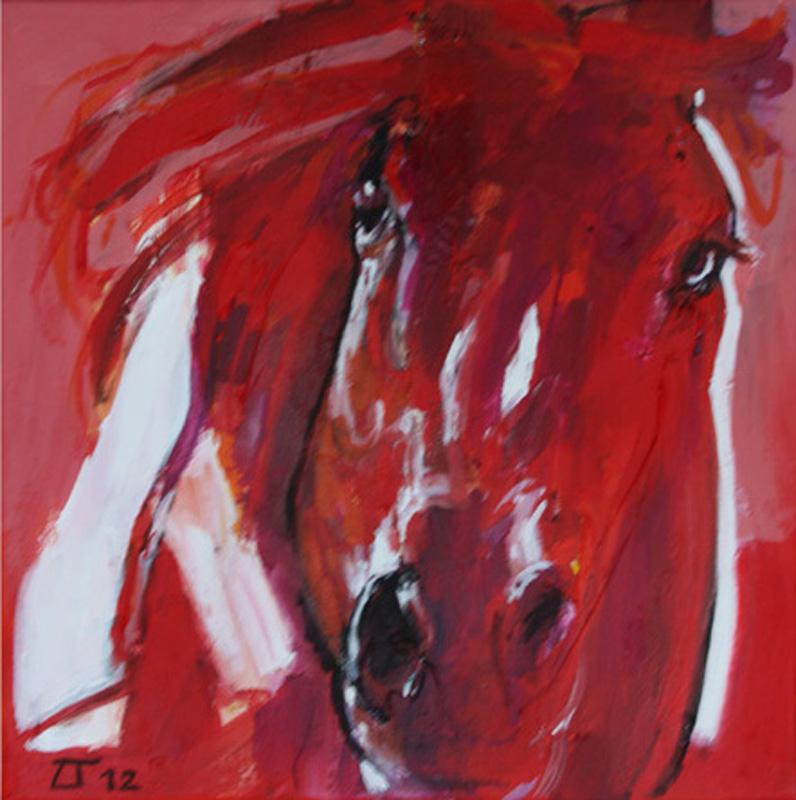 ○ Cavallo 7