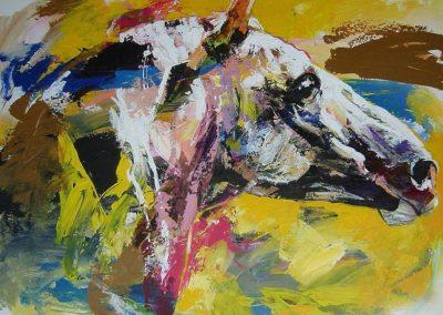 ○ Paard 2